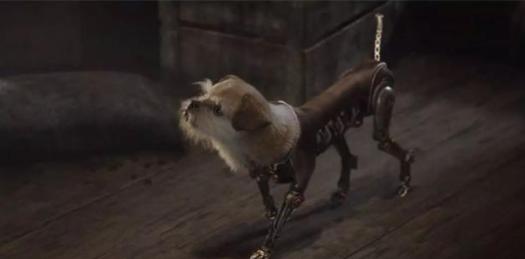 流浪狗与阿丽塔