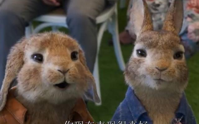 《比得兔2:逃跑计划》官方中文预告