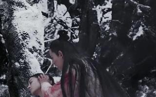 《烈火如歌》:银雪和如歌,浴火重生般的爱情,有多少人羡慕?