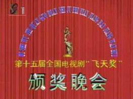 第15届中国电视剧飞天奖