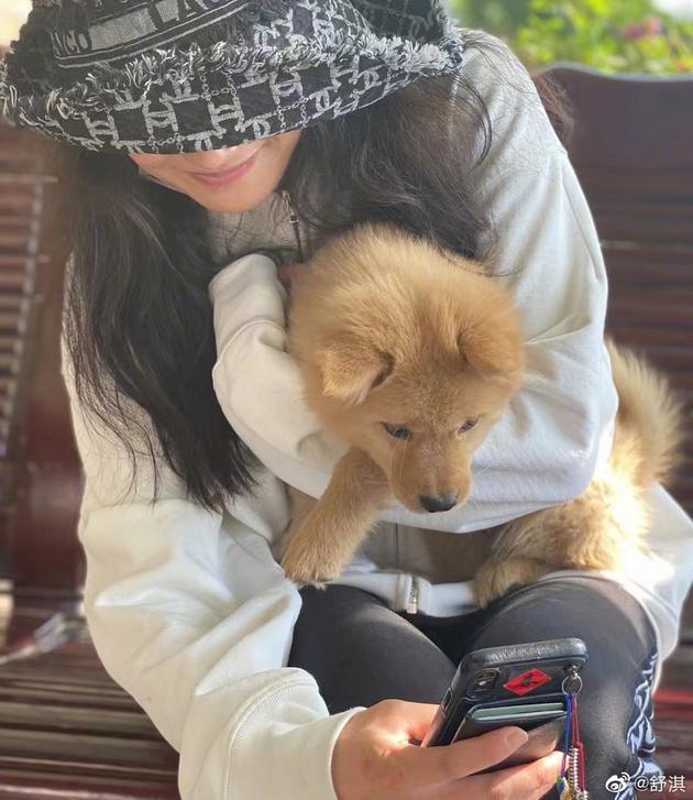 舒淇倡议由领养流浪小动物代替购买宠物