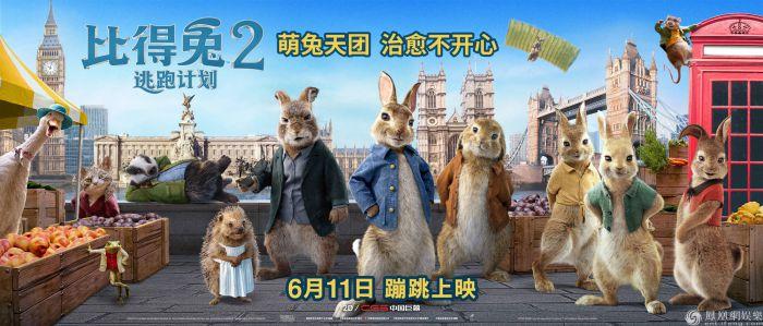 《比得兔2:逃跑计划》萌兔天团激萌登场 笑点频出治愈不开心