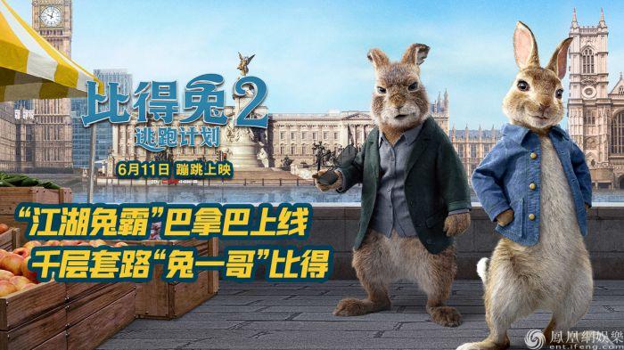 《比得兔2:逃跑计划》反派巴拿巴登场 萌兔天团集结搞事