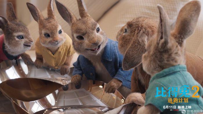 《比得兔2:逃跑计划》发布郭麒麟配音版预告 6月11日影院吸兔