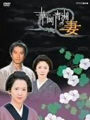 华冈青洲之妻电视版