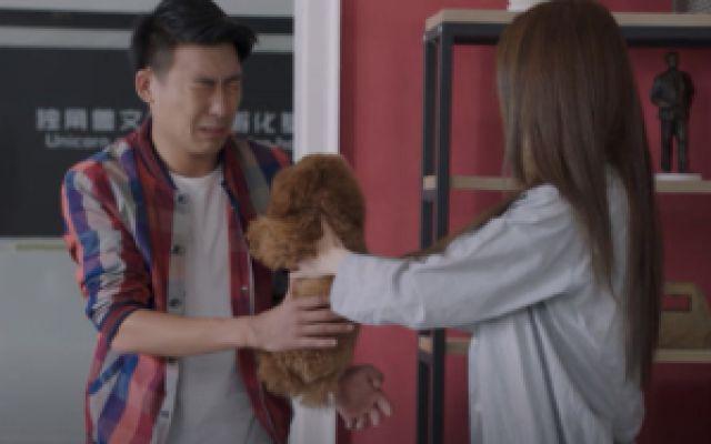 温州三家人:狗狗在公司咬人,女主人责怪小伙,自认倒霉吧